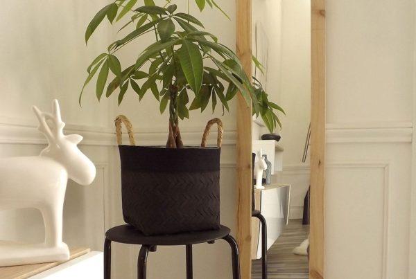 Décoration scandinave avec un miroir en bois brut, une plante et une statuette